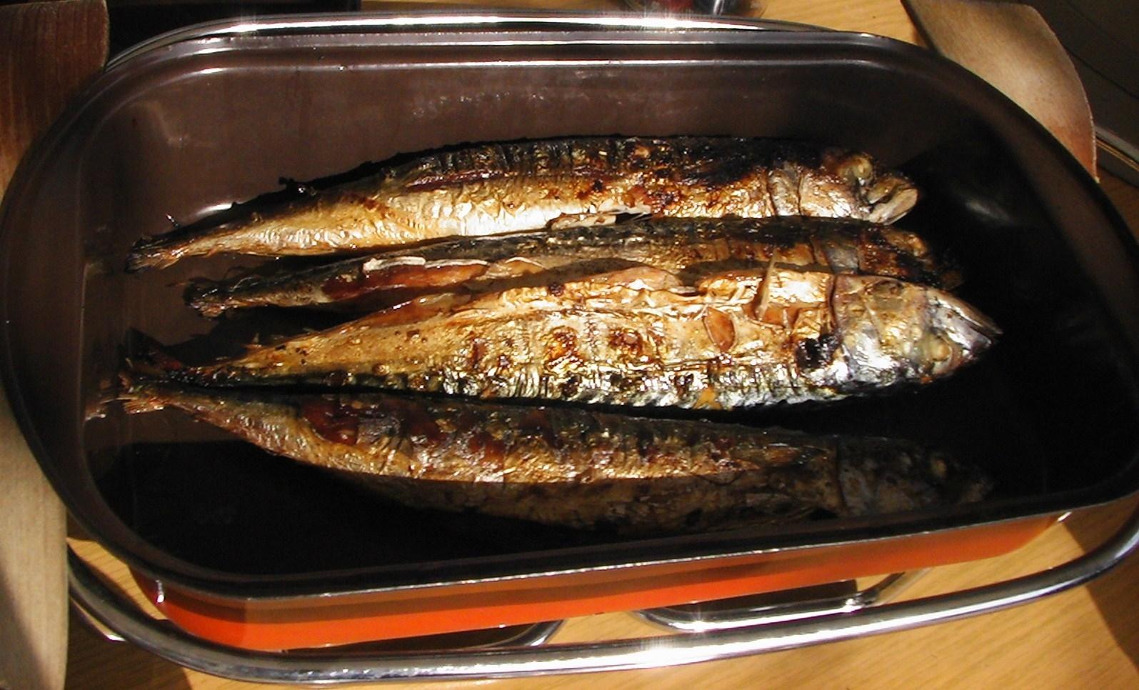11-Hausgrillfisch